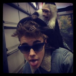 Justin Bieber ditches pet monkey