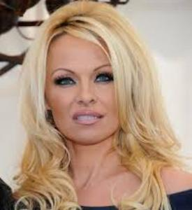 Pamela Anderson New Delhi Nov 15 Hollywood star Pamela Anderson