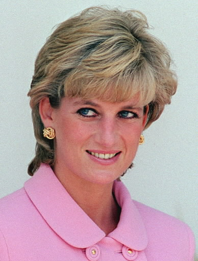 princess diana dress collection. The dress became