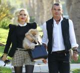 Did Gavin Rossdale really cheat on ex-Gwen Stefani?