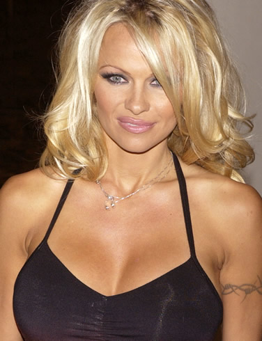 Pamela-Anderson London, April 14 : TV actress Pamela Anderson has admitted ...