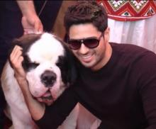 Sidharth Malhotra extends his obsession for pets