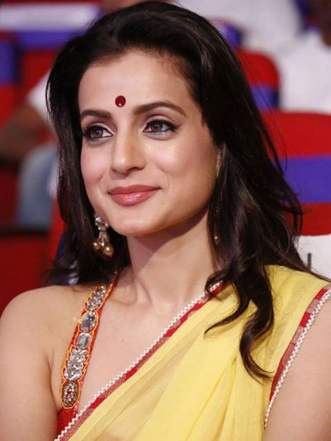 ameesha patel married