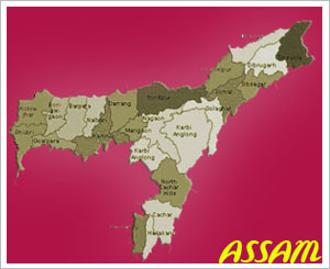 Bomb blast kills four people in Assam
