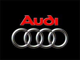 "Audi warns of ""most difficult year in history"" after record 2008"