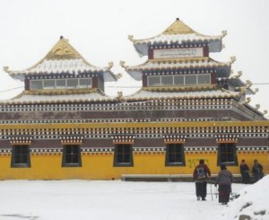 Exiled Tibetans blame china for self-immolations in their homeland