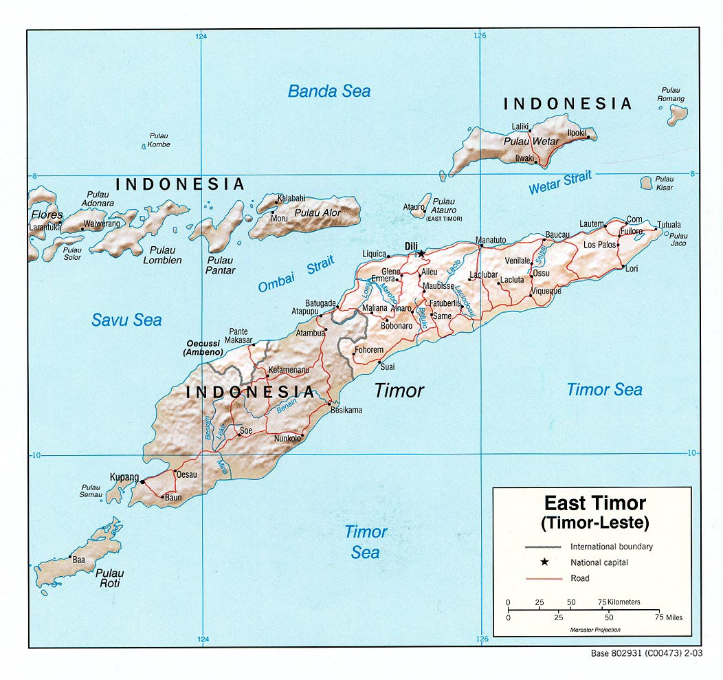 East Timor begins first joint military manoeuvres with US