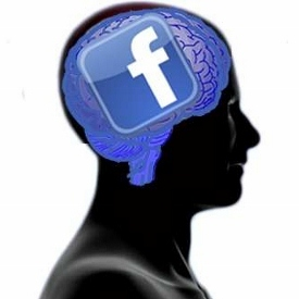 More Facebook friends indicates more brain, study