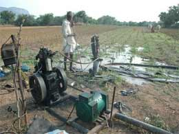 Government announces 50 per cent diesel subsidy for drought affected farmers