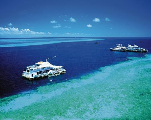 Great Barrier Reef in great danger | TopNews