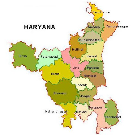 Haryana breaks its paddy production records