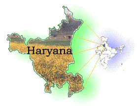 Haryana paddy arrival crosses last year's mark