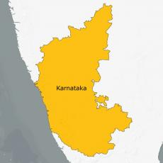 Karnataka confirms four more swine flu deaths