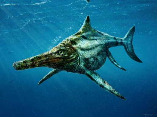 Loch Ness monster's relative