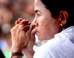 Mamata Banerjee takes FDI fight to Jantar Mantar