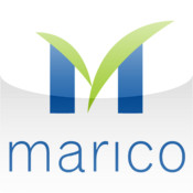 Marico's board approve restructuring plan