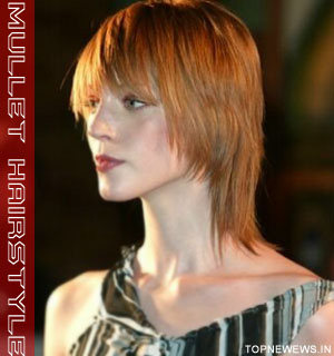 Pleasant New Hair Style Celebrity Mullet Hairstyle Short Hairstyles Gunalazisus