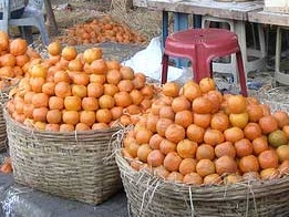 Hot weather conditions reduce Nagpur''s orange yield