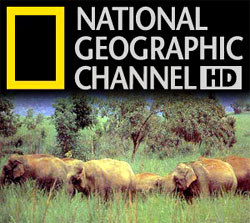 National geographic channel official website 2014