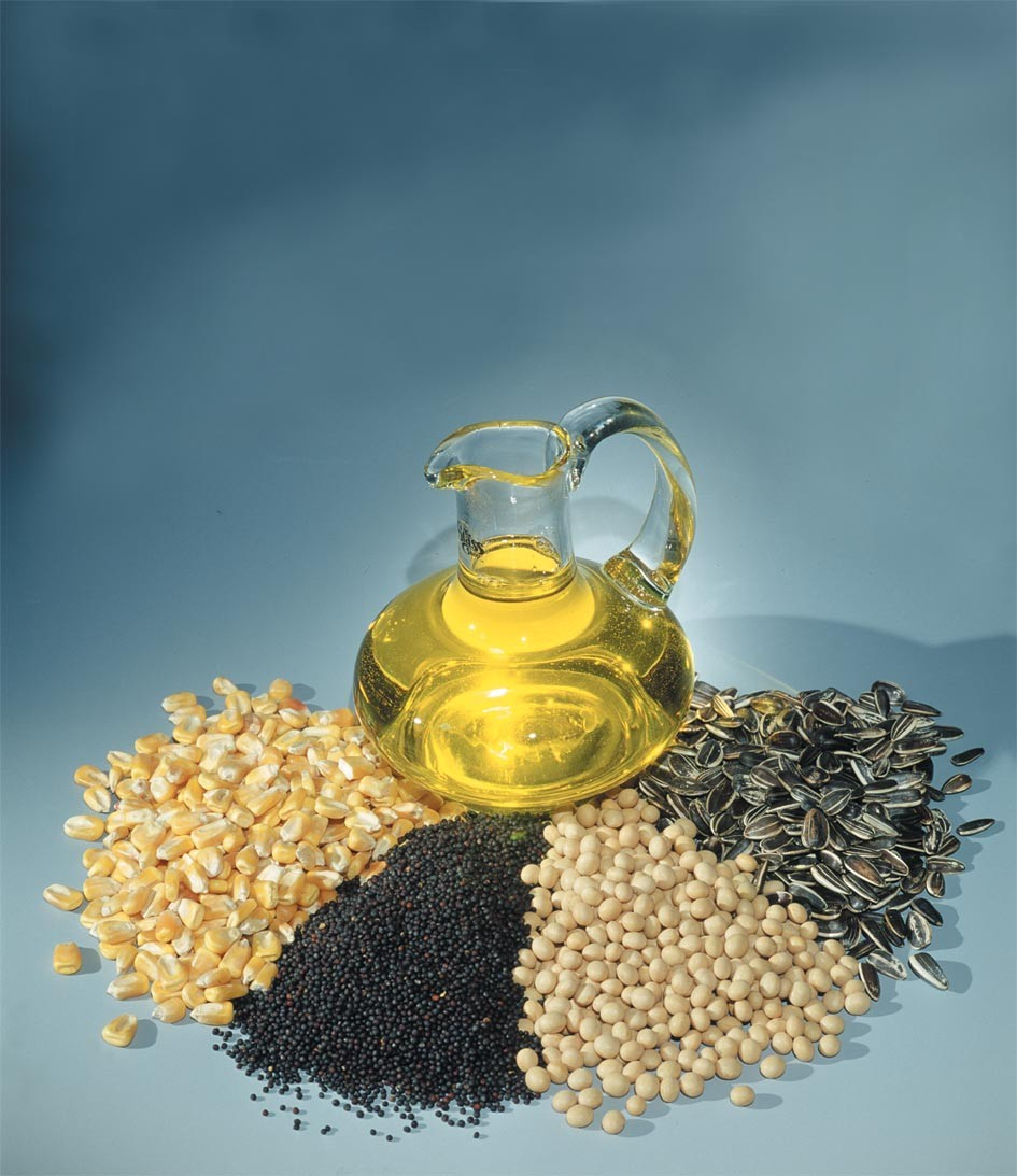 Oil And Oilseeds Market Watch By Nirmal Bang Securities