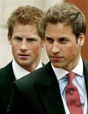 prince william and harry portrait. Wills, Harry visit wounded