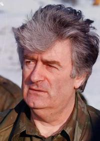 'Karadzic regretted that some Bosnian Muslims escaped genocide'