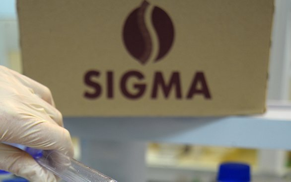 Central acquisition boosted wholesale business, says Sigma