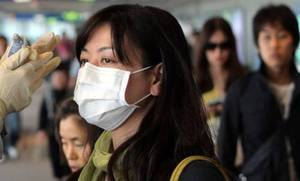 South Korea swine flu toll rises to 45