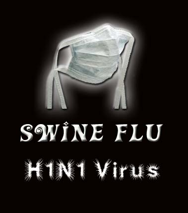 Two more swine flu deaths reported in Pune, Chennai