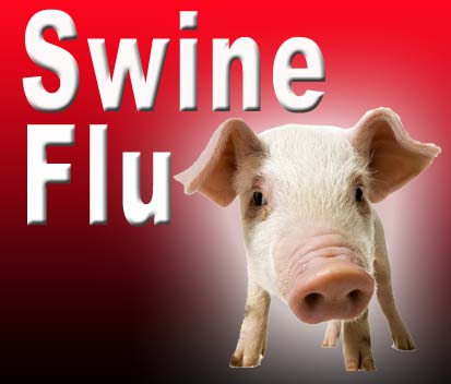Coimbatore reports ten suspected swine flu cases