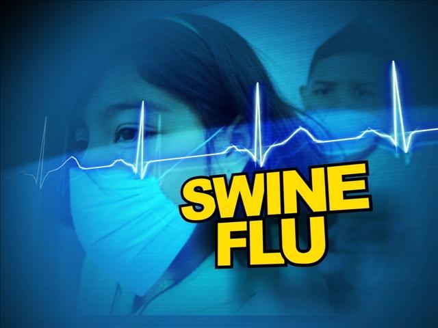 Swine flu danger appears to be ebbing