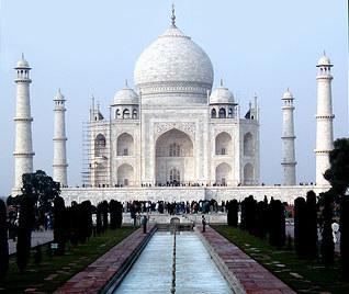 Sandalwood trees found axed near Taj Mahal