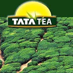 12 Tata Firms Show Interest To Invest In Karnataka, Says Official