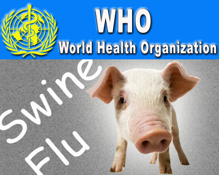 Global swine flu toll rises to over 5,700: WHO