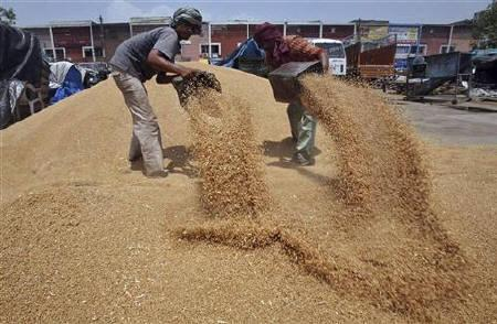 Govt. hikes wheat MSP by Rs 65 to Rs 1,350 per quintal