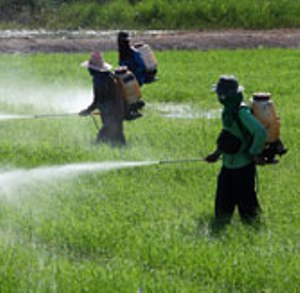 Indian agrochemical industry to reach USD7.5 bn by FY19: Report