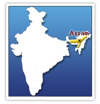 Five militants killed in India's restive Assam state