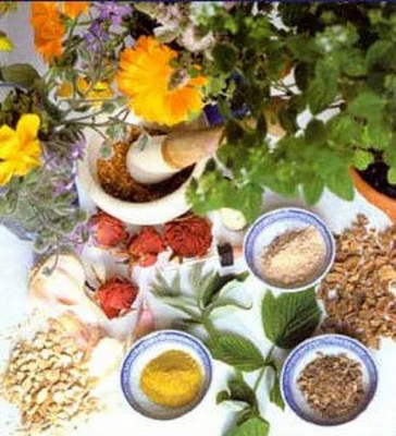 Ayurvedic and homeopathic treatment for employees in Punjab