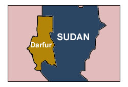 US lawmakers arrested during Darfur protest