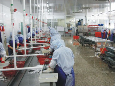 A new food processing plant in Assam changes lives of people