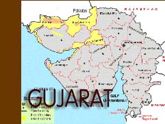 Hepatitis B death toll in Gujarat rises to 60