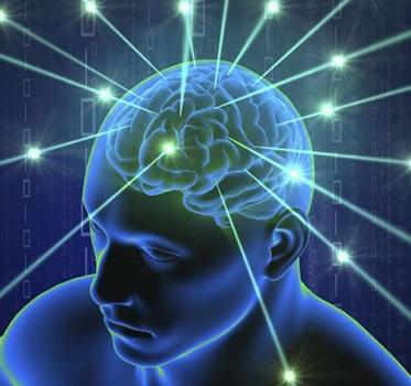 human brain works