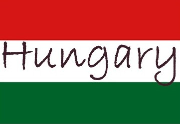 Key Hungarian opposition party: Former finance minister for premier