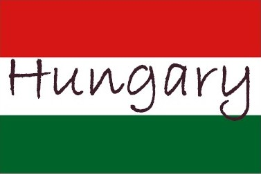 Hungary's new economy minister steps down