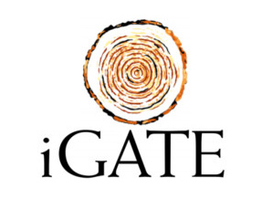 iGate to manage data services of UBS