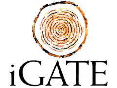 iGate net down 8.6 percent in first quarter