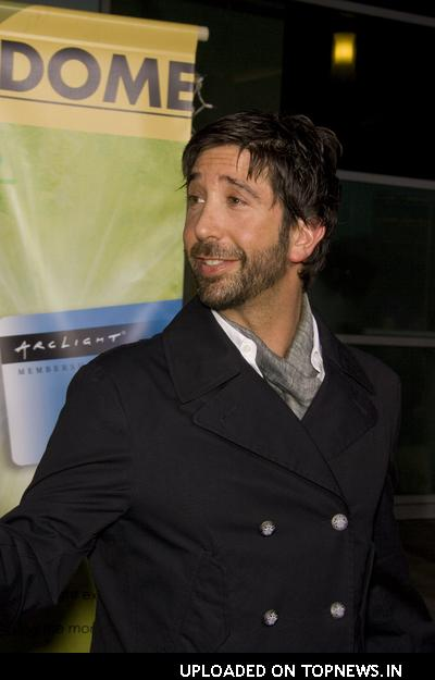 "David Schwimmer at ""Run Fatboy Run"" Los Angeles Premiere - Arrivals"
