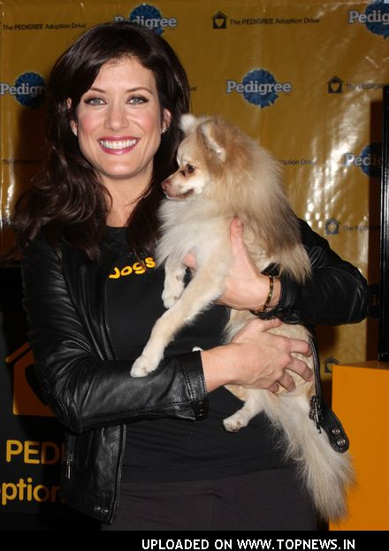 Kate Walsh Opens Pedigree Dog Store in Times Square to Help Shelter Dogs Find Loving Homes