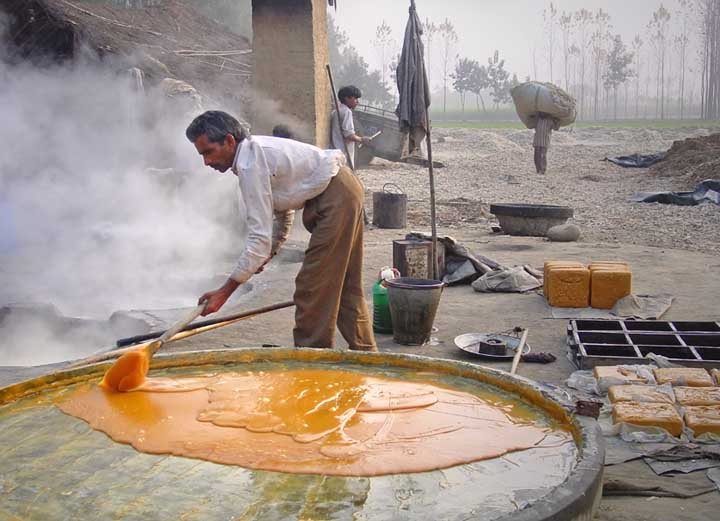Jaggery Production