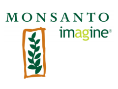 Monsanto plans to slash prices of GM seeds
